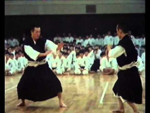 Demonstration Shorinji Kempo japon