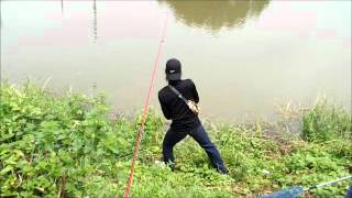 getlinkyoutube.com-ตกปลาช่อนใหญ่
