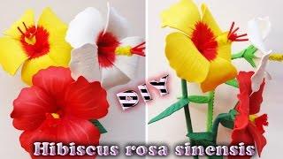 Hibiscus rosa sinensis |  Hecha de Goma eva, foamy, micro poroso