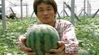 getlinkyoutube.com-私のとれたて日本一! (6)スイカ 玉返しの術