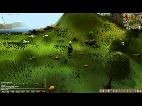 Runescape Full HD Test