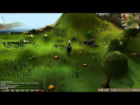 Runescape Full HD Test