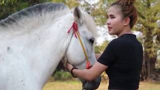 Lovely Girl Playing With Horse - How to teach your horse to lay down width=
