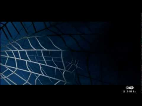 Spider-Man (Andrew Garfield) Trailer [Fanedit]
