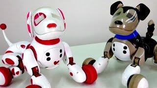 getlinkyoutube.com-Видео для детей. Развивающие игрушки: Интерактивные собачки toys и щенки Зумер (Zoomer)