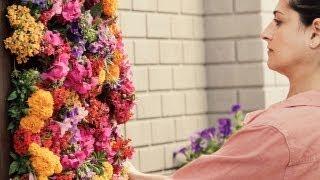 getlinkyoutube.com-Cómo crear un jardín vertical