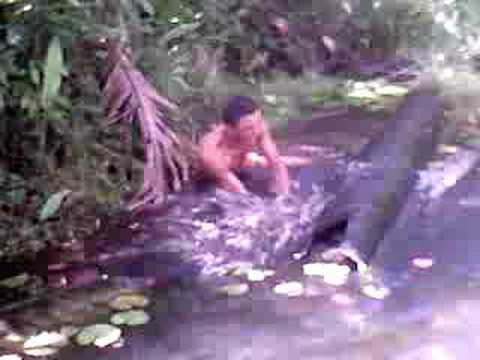 maniacos do parque - atack a anaconda