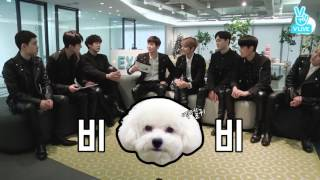 [EXO] EXO talked about shooting V LIVE with their pets: highlight