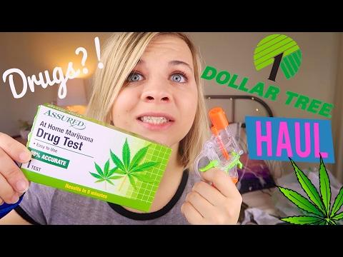 DRUG TESTING MYSELF?! -  DOLLAR TREE HAUL // SoCassie