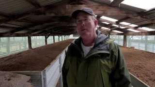 getlinkyoutube.com-The Bohemian Life:  Worm FarmerJack Chambers