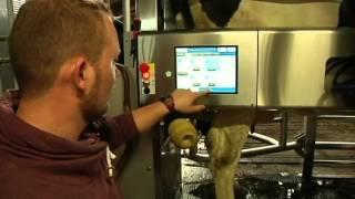 getlinkyoutube.com-Wie sieht es in einem modernen Kuhstall mit Melkroboter aus?