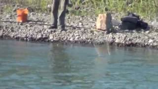 getlinkyoutube.com-Imagini braconaj barajul CORNETU