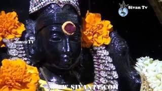 சூரிச் அருள்மிகு சிவன் கோவில் இரண்டாம் புரட்டாதிச் சனிவிரதம் 24.09.2016
