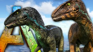 getlinkyoutube.com-Ark Survival Evolved - NEW Raptor / Saber, Taming! Jurassic Park Nova Raptors - Gameplay