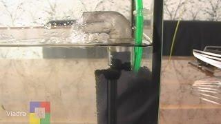 getlinkyoutube.com-Aquarium BIOFILTER -  Eigenbau  #für ein Aquarium mit Jungfischen bzw. Garnelen #