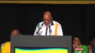 Zuma Counting Lesson