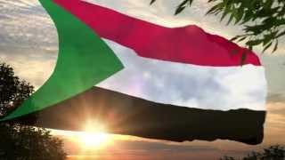 نقطة تفتيش | معا لسودان خالي من العنصرية