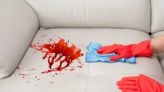 getlinkyoutube.com-How To Remove a Stain from a Sofa