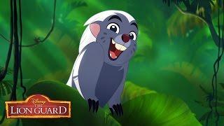 getlinkyoutube.com-Zuka Zama Music Video | The Lion Guard: Return of the Roar | Disney Junior