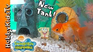 getlinkyoutube.com-HobbyFish + SpongeBob in NEW TANK! Bikini Bottom Fish Tank by HobbyKidsTV