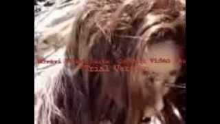 getlinkyoutube.com-پری دریایی در جاسک، بندرعباس، ایران.avi
