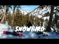 Snowbird Utah - Off Trail Skiing