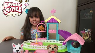 getlinkyoutube.com-Chubby Puppies Ultimate Dog Park Playset Unboxing