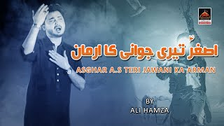 Noha - Asghar A.s Teri Jawani Ka Arman - Ali Hamza - 2017