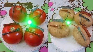 getlinkyoutube.com-How to Produce Electricity using Tomato and Potato