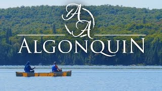 getlinkyoutube.com-Algonquin Provincial Park in 4K - Bushcraft and Canoe Camping in Ontario, Canada