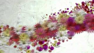 "getlinkyoutube.com-After Effects ""BLowing Flowers"""