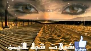 getlinkyoutube.com-شيله وضعت قلبي بيمينك...  شيلات شبل اليمن