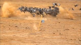شبكة لصيد الطيور بالتحكم عن بعد  ريموت كنترول