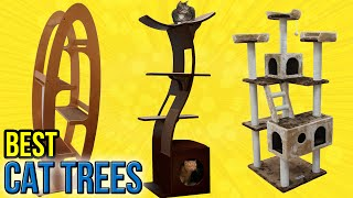 getlinkyoutube.com-10 Best Cat Trees 2016