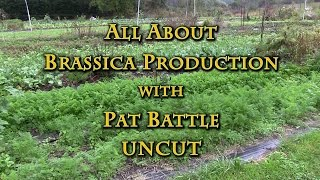 getlinkyoutube.com-All About Brassica Production with Pat Battle UNCUT