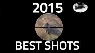 getlinkyoutube.com-Best shots of 2015 Wild boar hunting - Beste Schüsse Drückjagd und Individuelle Jagd Meilleur coups