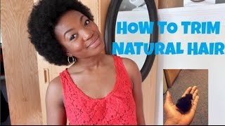 Natural Hair| How To Trim Your TWA