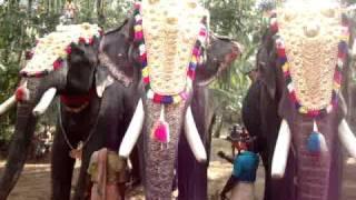 getlinkyoutube.com-Kiran Narayanankutty, Mangalamkunnu Karnan, Pampady Rajan - Kareparambil Thalapokkamalsaram