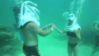 getlinkyoutube.com-Seaquarium Punta Cana