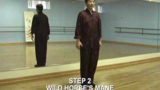 getlinkyoutube.com-Tai Chi Chuan 24 Steps Beginners Lesson 1