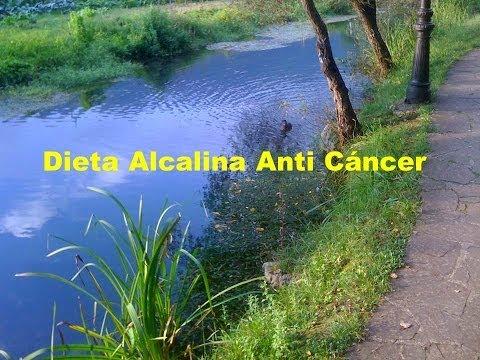 Dieta Alcalina Anti Cancer -- Dieta Alcalina Desintoxicante