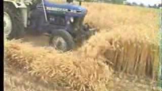 getlinkyoutube.com-Cutting Reaper on wheat Cutting