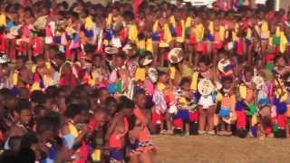 getlinkyoutube.com-2013 Reed Dance Umhlanga 1