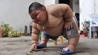getlinkyoutube.com-Fattest Kid In The World - Lu Hao