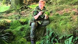 getlinkyoutube.com-Ray Mears' Extreme Survival S02E04 - Military Survival