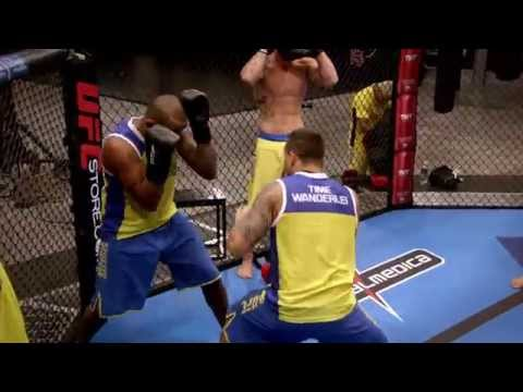 TUF Brazil 3: Aftermath