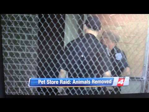 GREENWOOD PETS: Warren pet store raided by police; owner found hiding in basement