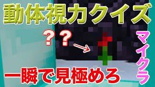 【マイクラミニゲーム】動体視力クイズ!? PS3 PS4 VITA