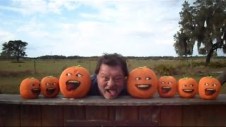 getlinkyoutube.com-Stupid Orange In Nightmares Of Trains