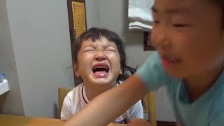 getlinkyoutube.com-もも泣く、せんのすけ涙を拭く Momo cries, Sen wipe Momo's eyes